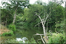 ST6968 : River Avon at Swineford by Roger Stead