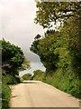 SW7343 : Lane beside Wheal Unity Wood Mine by Derek Harper