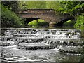 SP6933 : The 'Flosh' & Lords Bridge, Buckingham by Mark R Dornan