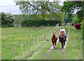 SJ6151 : Training the ponies, Stoneley Green, Cheshire by Roger  Kidd