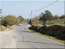 S9919 : Road from Forth Mountain to Wexford by David Hawgood