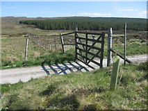 NC6214 : Track near Dalnessie by Chris Wimbush