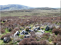 NC6614 : Hillside of Leathad Liath by Chris Wimbush