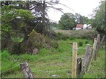 C5435 : Ballyargus Townland by Kenneth  Allen