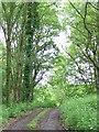 SU9224 : Footpath near Lodsworth by Maigheach-gheal