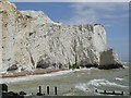 TV4898 : Seaford cliffs by nick macneill