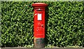 J2969 : Pillar box, Finaghy, Belfast by Albert Bridge