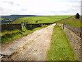 SE0417 : Green Lane by Alexander P Kapp