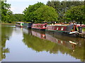 SJ9381 : Adlington Basin, Macclesfield Canal by John Darch