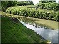 SP8829 : Old Swing Bridge by Mike W Hallett