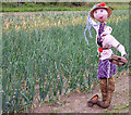 TM0734 : Kindly keep off my onions! by Zorba the Geek