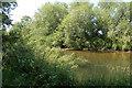 SO2098 : River Severn at Rhydwhyman by John Firth