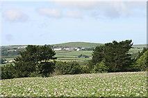 SW4329 : View across a cultivated field by Elizabeth Scott