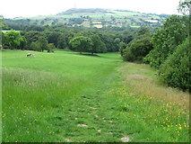 SE1612 : Footpath towards Royd House Wood by Chris Wimbush