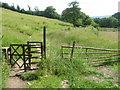 SE0336 : Footpath from Haworth by Chris Wimbush