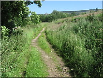 SE0027 : Footpath near Birchfield by Chris Wimbush