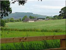 S4423 : Farm near Piltown, Co.Kilkenny by Dylan Moore