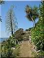 SW5129 : Path in the garden on St Michael's Mount by Sarah Charlesworth
