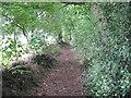SJ3178 : Footpath to Quarry Farm by David Quinn