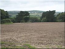 SW4329 : A fallow field on the Trewidden Estate by Rod Allday