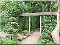 SW8766 : The Japanese Garden at St Mawgan by Richard Hoare