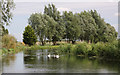 TL6575 : Old course of the River Lark at Isleham by Bob Jones