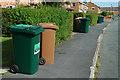 SJ4169 : Ubiquitous wheelie bins at Upton by Row17
