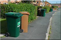 SJ4169 : Ubiquitous wheelie bins at Upton by Row17