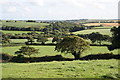 SW8751 : Farmland near Treveale by Fred James