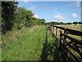 TL6150 : Public footpath by Hugh Venables