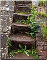 SJ6357 : Steps on Cholmondeston Lock by Andy Beecroft