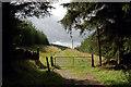NT2641 : Forestry gate : Week 35