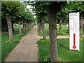 TL2966 : Hilton churchyard by Michael Trolove