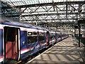 NT2573 : Platform 4, Waverley Station : Week 35