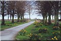 SK4861 : Entrance road to Teversal Manor Gardens, Notts. by nick macneill