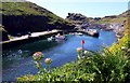 SX0991 : The harbour at Boscastle by Steve Daniels