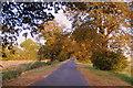 TF2800 : Thorney Drove at Dusk by roz stirman