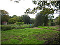 SW8951 : Allotments at Ladock by Rod Allday
