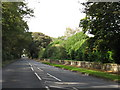 SJ7083 : A50, Looking Toward High Legh by Peter Whatley