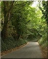 SX5056 : Military Road, Efford by Derek Harper