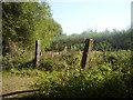 TM3490 : Old Railway crossing by Ashley Dace