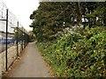 SX5257 : Plym Valley Trail by Derek Harper