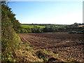 SW8749 : Field at Levardro by Rod Allday