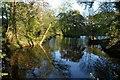 SJ8263 : Fish Pond by Galatas
