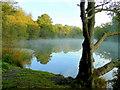 SO6010 : Lower Cannop Pond; October morning mist 1 : Week 41