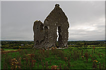 R7230 : Castles of Munster: Knocklong, Limerick by Mike Searle