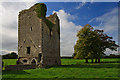 S1853 : Castles of Munster: Ballybeg, Tipperary by Mike Searle