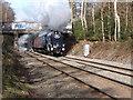 SP0898 : Sir Nigel Gresley Steam Special by John Proctor