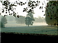SP6949 : Misty view of Easton Neston Park by Oliver Hunter