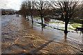 NT2540 : The swollen River Tweed, Peebles : Week 46